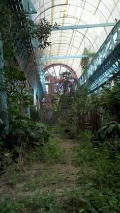 Abandoned greenhouse in Lafayette, LA. Photo By : Leslie Burke©