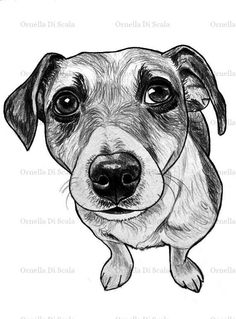 Ritratto su commissione cane matita su cartoncino