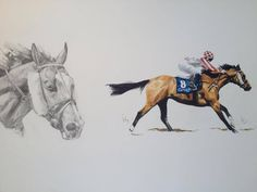 Equine art thoroughbred racehorse 'Regal Power' by artist Tony O'Connor whitetreestudio.ie