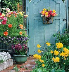 Flowers all around the Garden Gate.