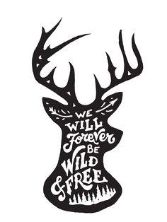 Wild & Free by Mark van Leeuwen