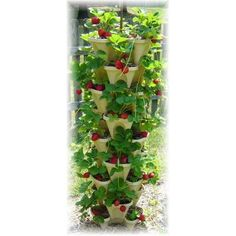 Garden Supply Stacking Planters Hydroponics Vertical