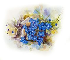 Frühlings Enzian spring gentian