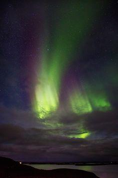 Myvatn Northern Lights, Iceland
