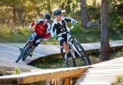 Veneto Il Cortina Bike Park, all'arrivo della Funivia Freccia nel Cielo sul Col Drusciè, vicino al centro del paese, ha tre percorsi con tra...