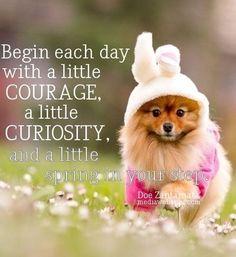 ❤️Hit That Share Button To Motivate Your Friends & Family❤️ ▬▬▬▬▬▬▬▬▬▬▬▬▬▬▬▬▬▬▬ #MondayMotivation #MotivationMonday #quotes #quoteoftheday #motivationalquotes #PuppyLove #PawPrints #Happiness #Pom #Pomeranian #LancasterPuppies www.LancasterPuppies.com