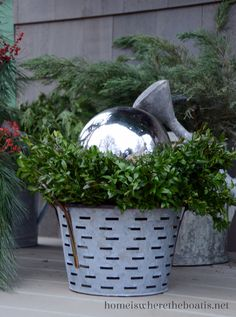 Silver gazing ball rests atop an olive bucket nestled in greenery. Love!