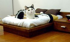 Custom beds for the fur kids. Wonder what they'd keep in the nightstand drawers...extra nip maybe...