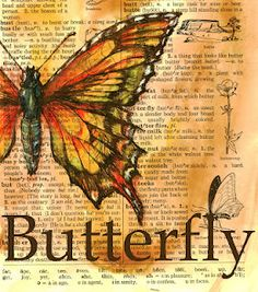 """""""Butterfly"""" --- 5"""" x 6"""" Mixed Media Drawing on Distressed Dictionary Page. Love the color in this artwork"""