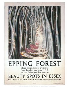 Epping Forest Beauty Spots in Essex aug16