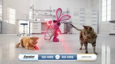 Energizer Bunny, Tv Commercials, Pointers, In This Moment, Stylus, Tv Adverts