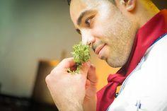 Repórter Cultural : Dicas de culinária: 7 links para quem quer aprender a cozinhar