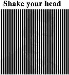 Shake your Head......