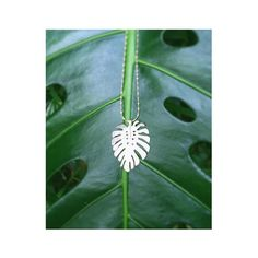 silver monstera jungle leaf necklace#silver#leaf#necklace#nature#botanical#island#jungle#travel#natureinspired#jewelry#jewellery#handmade#hawaii#artisan#nyc#catherineweitzman#ジュエリー #ハンドメイド #ハワイ#自然