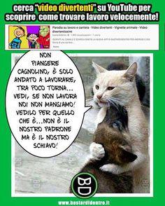 #bastardidentro #gatto #cane