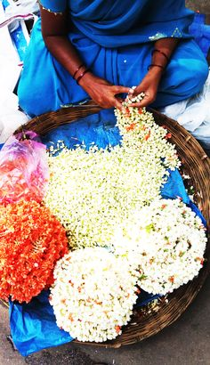 Jasmine flowers.India