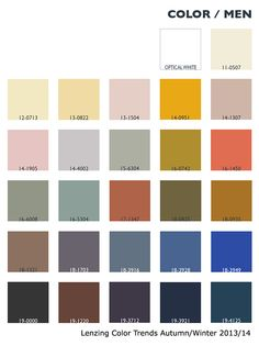 Menswear Lenzing Color Trends Autumn/Winter 2013/14
