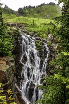 Mount Rainier's Myrtle Falls and Edith Creek, a beautiful and easy hike on the Paradise area of Mount Rainier National Park, Washington. Mount Rainier National Park, Small Waterfall, Architecture Photo, Myrtle, Washington State, Lush, Summertime, National Parks, Stock Photos