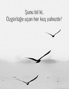 Şunu bil ki,  Özgürlüğe uçan her kuş yalnızdır!  #sözler #anlamlısözler #güzelsözler #manalısözler #özlüsözler #alıntı #alıntılar #alıntıdır #alıntısözler #şiir #edebiyat