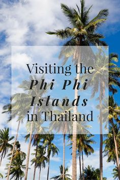 Visiting the Phi Phi Islands in Thailand // Click through to read the whole post! www.girlxdeparture.com