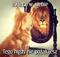 Plakaty i obrazy: Niesamowite plakaty, piękne, sławne obrazy. Oglądaj i kolekcjonuj niezwykłe obrazy. Key Quotes, Wise Quotes, Weekend Humor, Life Coach Quotes, Motto, Quotations, Digital Art, Motivation, Funny