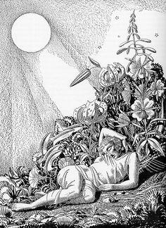 "Rockwell Kent. ""A Midsummers Nights Dream"""