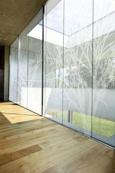 Gym Glass Door (White Trees window film - part of Tektura's new window film range) Glass Film Design, Rear Window Decals, Frosted Window Film, Glass Office, Window Graphics, Window Films, Glass Partition, Windows, Office Interior Design
