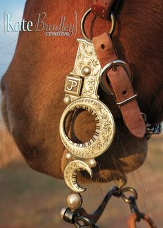 Bit Structure and Function – Capron Bits & Spurs Cowboy Spurs, Cowboy Gear, Cowboy And Cowgirl, Western Bridles, Western Horse Tack, Horse Gear, Horse Jewelry, Horse Bits, Silver Work