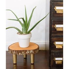 A wonderful way to display your house plants! This DIY project is super easy and will be sure to add some rustic flair to your home. I love wood slice projects and this little plant s