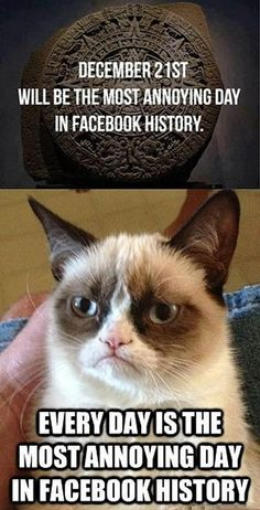 Grumpy-Cat-About-Most-Anoyng-Moment-In-Facebook-History.jpg (400×784)