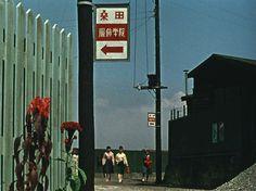 shomingekiblog: Notes on Akibiyori (Late Autumn by Yasujiro Ozu, Japan: 1960- (Berlin Filmfestival II. - Berlinale Classics