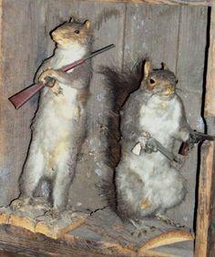 squirrel hunters