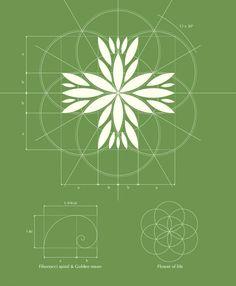 Czech Medical Herbs logo design