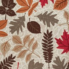 SEASONAL FALL PRINT: This tablecloth features an all-over print of falling leaves in earthy shades of orange, red and brown. Perfect for adding fall flair to your kitchen! Fall Home Decor, Autumn Home, Home Decor Trends, Home Decor Inspiration, Farmhouse Kitchen Inspiration, Kitchen Tablecloths, Falling Leaves, Orange Red, Home Accents