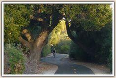 Bike the Bob Jones Trail