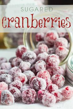 Sugared cranberries are such a simple little treat that don't take a lot of time at all, and you could easily have little hands help you if you have children in the home. Single Serve Desserts, Desserts For A Crowd, Great Desserts, Delicious Desserts, Trifle Desserts, Party Desserts, Dessert Recipes, Hot Fudge Cake, Hot Chocolate Fudge