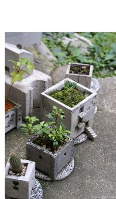 fascinating, beautiful concrete planters