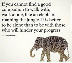 I love elephants. ・・・ Walk alone in life if you have toxic relationships around you 🙌🏽🙌🏽 💖 Repost🧘‍♀️ Via 🧘‍♂️for daily spiritual and positive peaceful messages 🔔 ‼️ ‼️ ‼️ Wise Quotes, Success Quotes, Positive Attitude, Positive Quotes, Everything Is Temporary, Soul Family, Better Alone, Motivational Posts, Spirit Science
