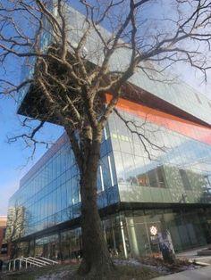 Halifax Central Library, NEAR PUBLIC GARDENS