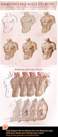 Male muscle step by step tutorial by sakimichan.deviantart.com on @DeviantArt