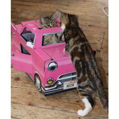 Cat Playhouse Pink  Catillac