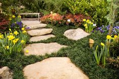 mondo grass isn't an easy plant to use, but it's so perfect this way, between stones...