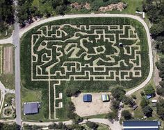 Six Nearby Corn Mazes To Get Lost In This Fall: Gothamist