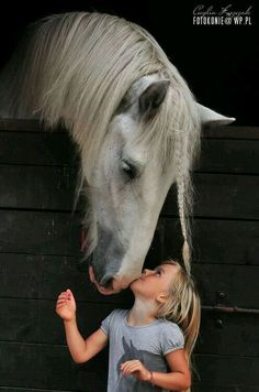 Horses and children, I often think, have a lot of the good sense there is in the world. All The Pretty Horses, Beautiful Horses, Animals Beautiful, Majestic Horse, Animals For Kids, Cute Animals, Wild Animals, Clydesdale, Horse Pictures