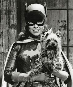 Yvonne Craig ~ Batgirl...and her little yorkie too....