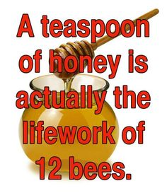 These 12 One-Sentence Facts Will Blow You Away In Mere Seconds. Especially That 4th One.