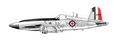 F4UM Tigershark
