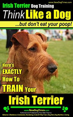 Irish Terrier Dog Training | Think Like a Dog, But Don't ...