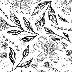 Pen and ink drawing of New Zealand Native plants and flowers by Zoe Sizemore of Case In Point Design Studio. Please get in touch for commissions information.