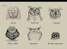 Night Owl Quotes. QuotesGram by @quotesgram